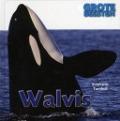Bekijk details van Walvis