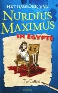 Bekijk details van Het dagboek van Nurdius Maximus in Egypte