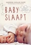 Bekijk details van Baby slaapt