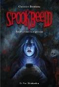 Bekijk details van Spookbeeld