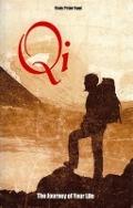 Bekijk details van Qi