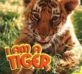 Bekijk details van I am a tiger