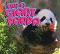 Bekijk details van I am a giant panda