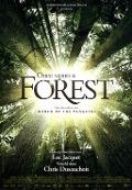 Bekijk details van Il était un forêt