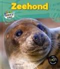 Bekijk details van Zeehond