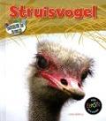 Bekijk details van Struisvogel