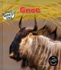 Bekijk details van Gnoe