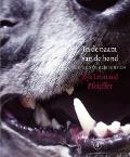 Bekijk details van In de naam van de hond