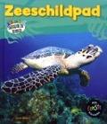 Bekijk details van Zeeschildpad