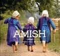 Bekijk details van Thuis bij de Amish