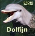 Bekijk details van Dolfijn