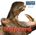 Bekijk details van Nijlpaard