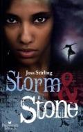 Bekijk details van Storm & Stone