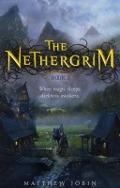 Bekijk details van The Nethergrim; Book 1