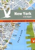 Bekijk details van New York in kaart