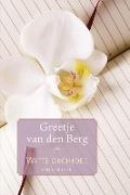 Bekijk details van Witte orchidee