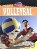 Bekijk details van Volleybal