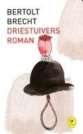Bekijk details van Driestuiversroman