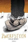 Bekijk details van Zwerfsteen