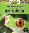 Bekijk details van Lichaamsdelen van amfibieën