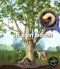 Bekijk details van Speurtocht in een boom