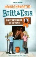 Bekijk details van Ponyvriendin in gevaar