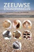 Bekijk details van Zeeuwse strandfossielen