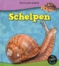 Bekijk details van Schelpen
