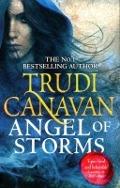 Bekijk details van Angel of storms