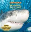 Bekijk details van Mijn kleine boek over haaien