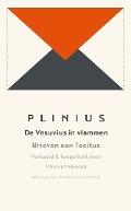 Bekijk details van De Vesuvius in vlammen