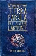 Bekijk details van Het zilveren labyrint