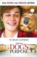 Bekijk details van Een hond met negen levens
