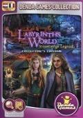 Bekijk details van Labyrinths of the world