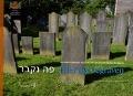 Bekijk details van Hier ligt begraven
