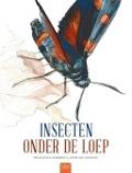 Bekijk details van Insecten onder de loep