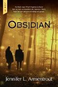 Bekijk details van Obsidian