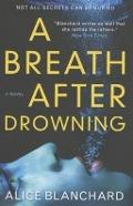 Bekijk details van A breath after drowning