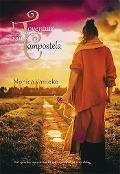 Bekijk details van De Tovenaar van Compostela