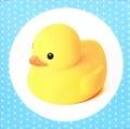 Bekijk details van Baby's vrolijke badboekje