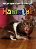 Bekijk details van Hamster
