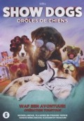 Bekijk details van Show dogs