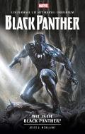 Bekijk details van Wie is de Black Panther?