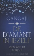 Bekijk details van De diamant in jezelf