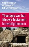 Bekijk details van Theologie van het Nieuwe Testament in twintig thema's