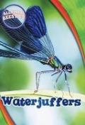 Bekijk details van Waterjuffers