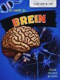 Bekijk details van Zo werkt je... brein
