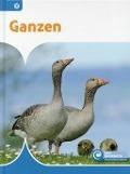 Bekijk details van Ganzen