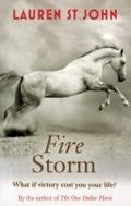 Bekijk details van Fire Storm