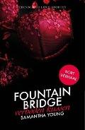 Bekijk details van Fountain Bridge - Verboden kussen